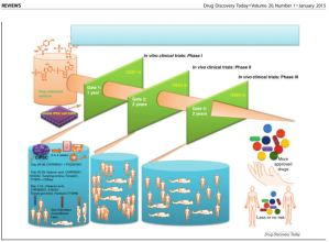 cellule staminali1
